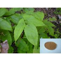 Quality epimedium herb extract/Epimedium /Icariin 10% 20% 30% 40%,50% 60% 70% 80% 90% 98 for sale