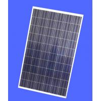 Quality Industrial Polycrystalline Solar Panel , 265W Polycrystalline Solar Module  for sale