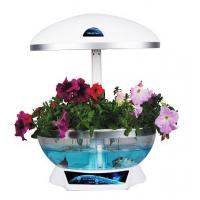 Electronic Mini Flower Garden Smart Fish Tank Aquarium Manufactures
