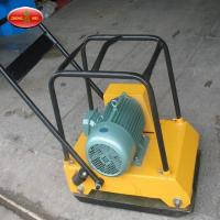 China Road Construction Machinery High Quality Diesel Engine Plate Compactor on sale