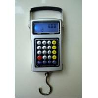 China Water-proof Portable Digital Scale , Electronic Postal Battery Weighing Scale on sale