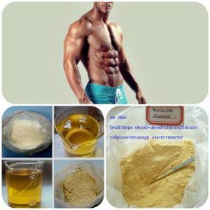 Quality Durabolin / Deca / Nandrolone Deca / Deca-Durabolin / Nandrolone Decanoate for for sale