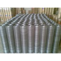 China 1/4 inch galvanized welded wire mesh on sale
