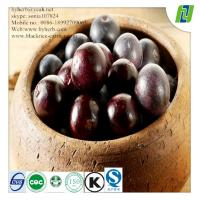 5:1 10:1 20:1 Water Soluble Acai Berry Extract Manufactures