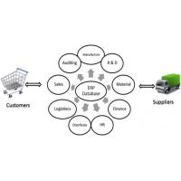 Windows ERP System Cloud , Web Enterprise Resource Planning Systems Manufactures