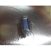 Quality Solar roach toys, Solar Cockroach toys, Solar Toys, Minimum Quantity More than 10 pcs for sale