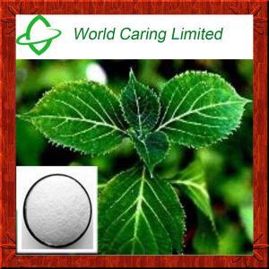 China Natural Herbal Viagra Yohimbine Extract Yohimbine Hcl 8%-98% HPLC Herbal Extract on sale