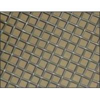 China Gal.square wire mesh,  wire mesh,  wire netting on sale