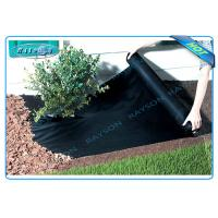 Anti UV Non Woven PP Ground Cover / Weed Control Fabric / Landscape Fabric