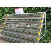 A Type Galvanized Steel Automatic Quail Birds Cages , Quail Breeding Cages 6 Tiers Manufactures
