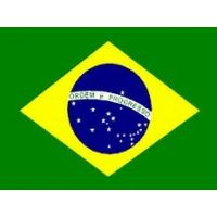 China to Brazil  shipping A1Chinafreight air cargo agent to Sao Paulo , Brazil