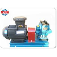 External Double Gear Oil Transfer Pump Diesel Fuel Transfer Pump Simple Structure Manufactures