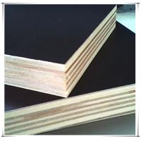 film faced plywood manufactuer from China