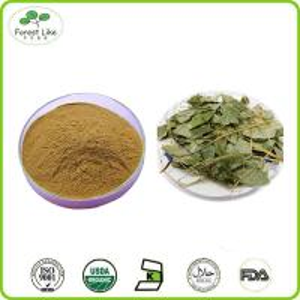 China High Quality Epimedium Extract Icariin 98%.Icariin 98% Powder on sale