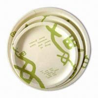 Melamine Dinner Plate, Available in Various Designs and Sizes Manufactures
