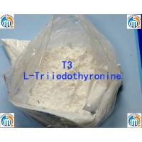 Oral Injectable Anabolic Steroid CAS 55-06-1 L-Triiodothyronine T3 Manufactures