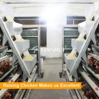 China Factory Design Top Quality Automatic Chicken Feeding System on sale