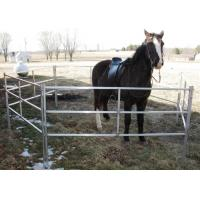 Extremely Long Lasting Horse Corral Panels Heavy Gauge Carbon Steel Material Manufactures