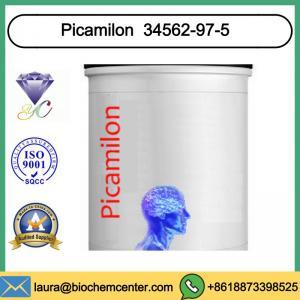 High Purity Nootropic Supplement Powder Picamilon for Brain Improve 34562-97-5 Manufactures