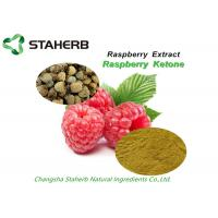 Weight Losing Raw Matreials Raspberry Extract Plant Extract Raspberry Ketone 99% Manufactures