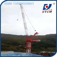 Design for Korean customers 25m Boom Length 6.0ton Max. Load Luffing Jib Tower Crane Manufactures