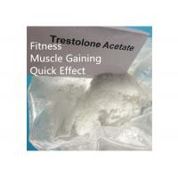 China Trestolone Acetate 6157-87-5 Muscle Building Strong Effects USP Standard on sale