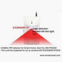 Digital PIR Alarm Motion Detector For Home Security Alarm wireless camera Manufactures