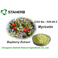 Anti-inflammatory Bayberry Bark Extract Myricetin 98% Plant Extract Powder Manufactures