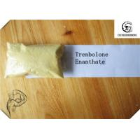 CAS 472-61-546 Trenbolone Steroid / Trenbolone Enanthate 97.0~103.0% Muscle Bodybuilding Steroid Hormone Manufactures