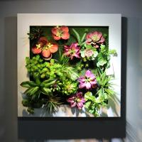 Home Furnishing Artificial Living Wall Panel Fake Succulent Art Plants from China Factory Manufactures