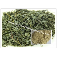 Hot Water Soluble Antibiotic Action Vine Tea Extract Manufactures