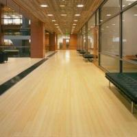 Natural Vertical Bamboo Flooring with Matt, Semi-gloss, and Glossy Roller Coating Manufactures