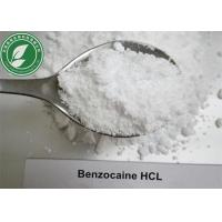 Local Anesthetic Powder Benzocaine Hydrochloride For Pain Killer CAS 23239-88-5 Manufactures