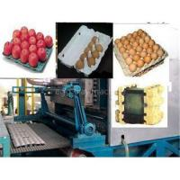 China Egg tray machine on sale
