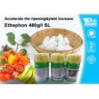 China Ethephon 48% SL Plant Growth Regulators To Promote Pre - Harvest Ripening 16672-87-0 on sale