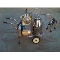 stainless steel cow milker Manufactures