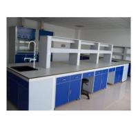 China Steel Structure Epoxy Resin Powder Coated Medical Lab Table with Cabinet Storage on sale