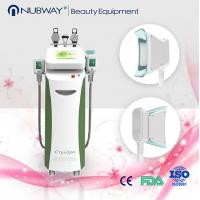 5 handles fat reduction / skin whitening cryolipolysis slimming multifunction machine Manufactures