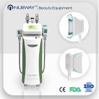 salon use cryolipolysis slimming machine for cellulite removal / skin tightening Manufactures