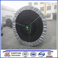 Quality Chemical Resistant Conveyor Belt for sale