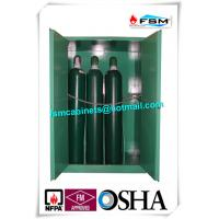 Metal Fireproof Storage Cabinet For Storing Gas Oxygen / Paint / IBC Drum Manufactures