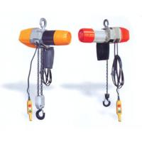 250 kg, 500 kg Dual Speed Electric Chain Hoist ( Chain Block ) For Stores, Warehouses, Medicine Manufactures