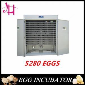 5280 eggs incubator large incubator model of LH-17 Manufactures