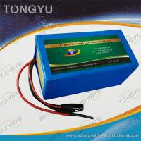 Quality Mobility Scooters EV Lithium Ion Polymer Battery 48V 20Ah For Electric Wheelchairs Scooter for sale