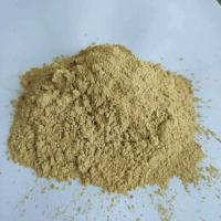 Focus Herb Natural Tongkat Ali Extract Manufactures