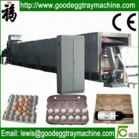China Competitive metal pulp moulding egg tray drying line on sale
