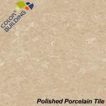 Decorative Wall Polished Porcelain Tiles Marble Nano Manufactures
