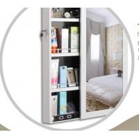 Wall Mirror With Jewelry Storage , Sliding Door Standing Mirror Jewelry Box Manufactures