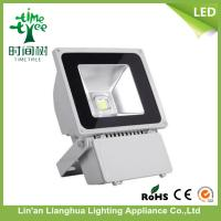 Green Cool White 6500k Outdoor 100 Watt LED Flood Lights For Parks Manufactures