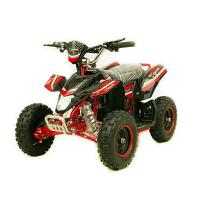 500W -1000W 36V Electric Mini ATV Quad Bike for Kids Manufactures
